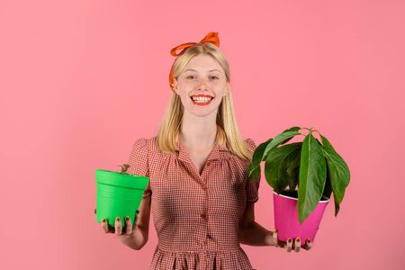 Houseplant. Beautiful florist holds house plants. Happy woman hold potted plants. Woman gardener with potted plants. Smiling woman holds flower in pot. Charming cheerful pinup girl with flower in pot Stok Fotoğraf - 134339892