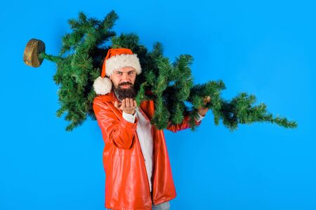 Bearded man in costume of Santa Claus holds Christmas tree sends air kiss. Christmas. Santa man carrying christmas tree. Pine tree. Santa man with fir-tree blowing kiss. Christmas, new year, holiday