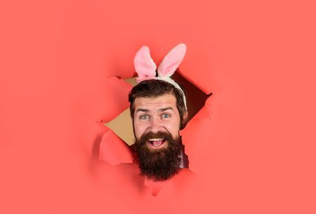 Through paper. Easter Day. Happy bearded man through paper. Easter. Spring holiday. Easter bunny costume. Spring. Rabbit. Bunny mask. Bearded man looking through paper. Preparing for Easter. Egg hunt