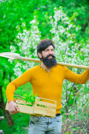 Gardening tools. Work in garden. Bearded man with gardening spade. Gardener work. Farm. Work in garden. Spring. Smiling man preparing to planting. Plants. Shovel