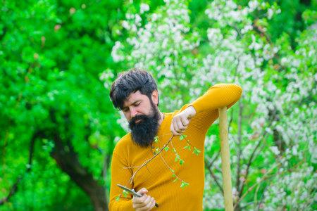 Man farmer. Farmer hold garden scissors. Serious man preparing to planting. Farmer works in garden. Gardening. Man with gardening tools. Work in garden. Gardener work. Farm. Spring farming. Eco farm