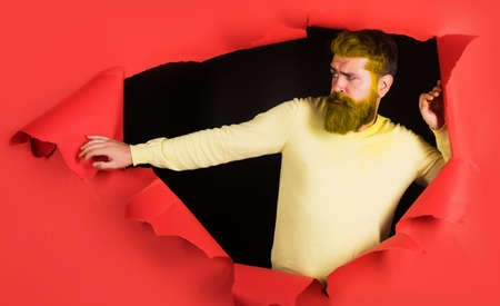 Bearded man with dyed hair and beard. Barber fashion and barbershop concept. Guy with colored hairstyle.