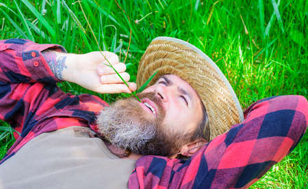 Enjoying sunny day. Happy Bearded man relaxing on green grass outdoors in summer.