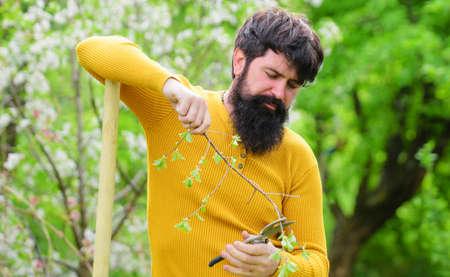 Spring time. Farm. Farmer working in garden. Bearded man with Garden scissors. Bearded male with gardening tools. Gardener work.