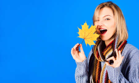 Winking Woman with leaf shows sign Okay. Autumn mood. Sexy girl with Yellow maple leaves showing ok-sign. Copy space.