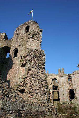 Welsh Dragon Flies at Raglan Castle (Portrait) Stock Photo - 5136716