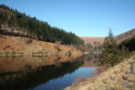 Tree-lined Reservoir at the Elan Valley, Wales Stock Photo
