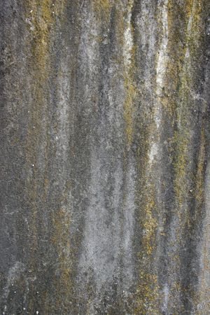 Lichen, Stains and Erosion on Stone (Portrait) Stock Photo