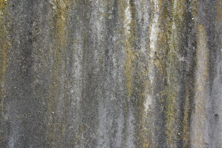 Lichen, Stains and Erosion on Stone (Landscape)