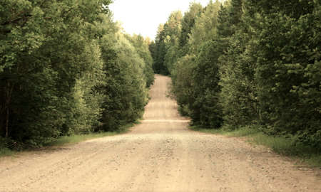 gritty: Country road in a wood