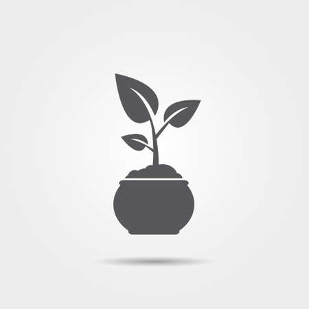 sprout: Sprout in flowerpot icon Illustration