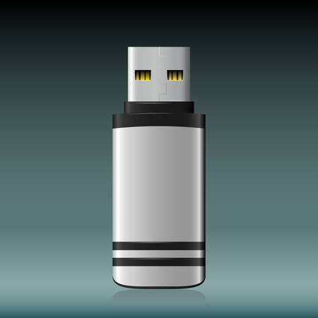 private security: Vector isolated USB pen drive