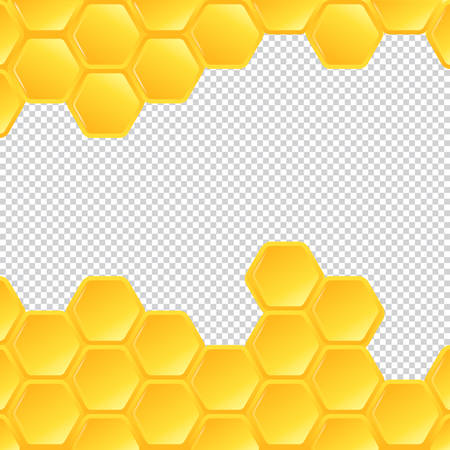 Honeycombs on transparent background. Vector Illustration