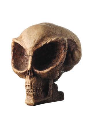 Alien schedel geïsoleerd op wit Stockfoto