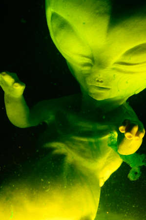 Alien foetus opgeschort in vloei stof