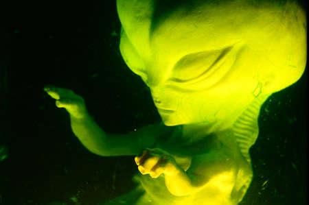 Alien foetus geschorst in vloeistofverwerking Stockfoto