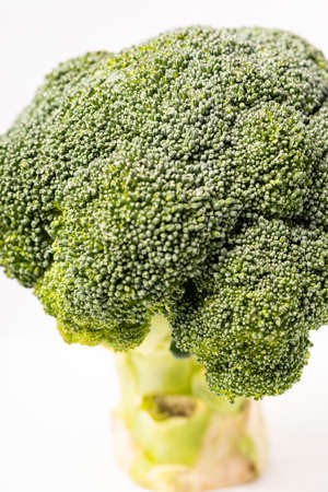Fresh Broccoli isolated on white background Reklamní fotografie