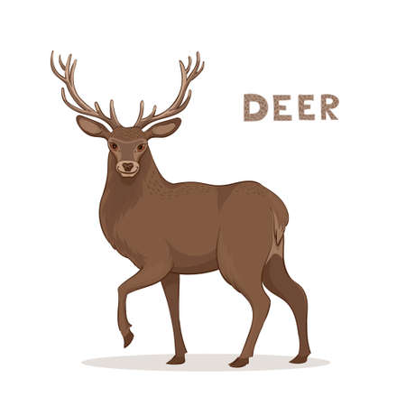 Vector illustration, a cartoon deer with long horns, isolated on a white background. Animal alphabet Stock Illustratie