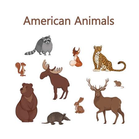 Satz süße amerikanische Tiere der Karikatur. Waschbär, Fuchs, Jaguar, Eichhörnchen, Elch, Bär, Gürteltier, Hase, Hirsch, Wühlmaus Vektorgrafik