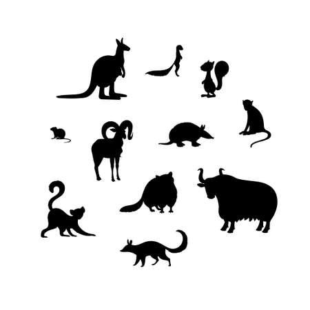 Set of animal s silhouettes. Kangaroo, xerus, squirrel, vole, urial, armadillo, macaque, lemur, raccoon, yak, numbat