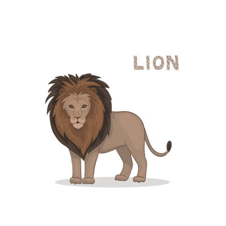Vector illustration, a cartoon lion, isolated on a white background.