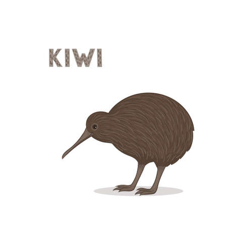 Vector illustration, a cartoon kiwi, isolated on a white background. Animal alphabet.