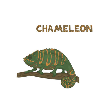 Vector illustration, a cartoon green chameleon with orange strips and brown dots with swirled tail, sitting on a branch, isolated on a white background. Animal alphabet.