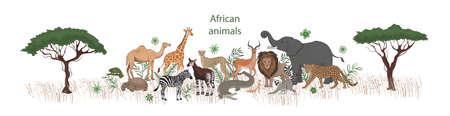 Vector banner, cartoon cute African animals with plants. Okapi, impala, camel, xerus, lion, chameleon, zebra, giraffe lemur cheetah crocodile leopard elephant tortoise