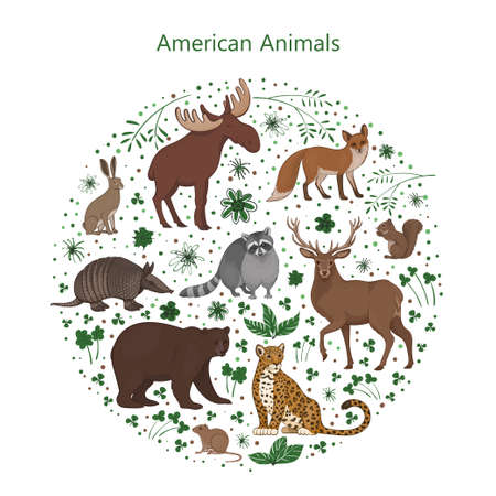 Vector set of cartoon cute American animals with leaves flowers and spots in a circle. Raccoon, fox, jaguar, squirrel, elk bear armadillo hare deer vole