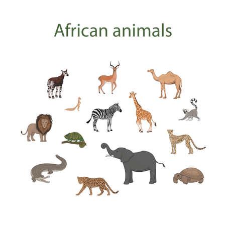 Vector set of cartoon cute African animals. Okapi, impala, camel, xerus, lion, chameleon, zebra, giraffe, lemur, cheetah, crocodile, leopard, elephant, tortoise