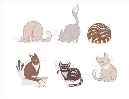 Vector illustration, set of cartoon cute cats on a white background. Vettoriali