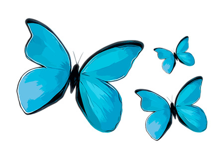 Vector illustration of watercolor butterfly. Stock Illustratie