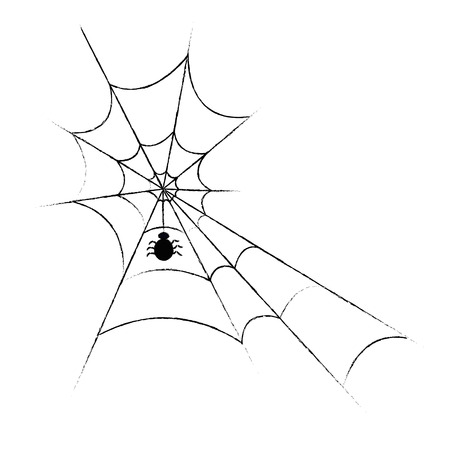 arachnophobia: Spiderweb and spider on white background.