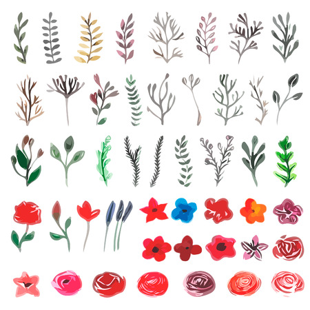 Vector floral set. Colorful floral collection with leaves and flowers, drawing watercolor. Spring or summer design for invitation, wedding or greeting cards Reklamní fotografie - 42584318