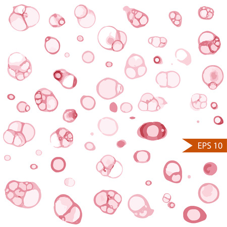 wine stains: Vector set of round wine stains. Various wine traces isolated on white background. Illustration