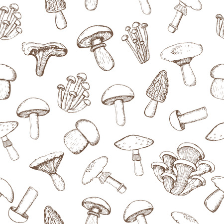 cep: Vector  Pattern of  mushrooms for design menus, recipes and packages product