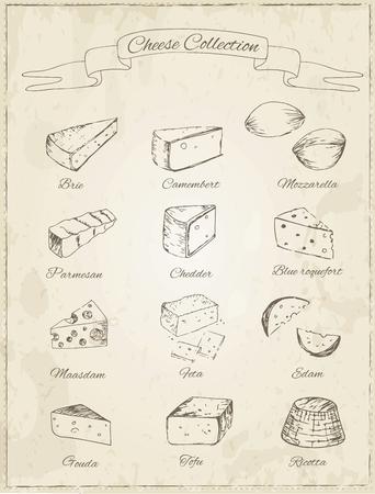 queso: Colecci�n de queso sobre un fondo de la vendimia. Cortar en rodajas surtido de quesos. Iconos decorativos Conjunto. Ilustraci�n vectorial de dise�o de men�s, recetas y paquetes