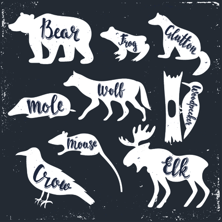glutton: Wild animals isolated silhouettes with lettering: bear, frog, glutton, wolf, mole, mouse, woodpecker, mouse, crow, elk.