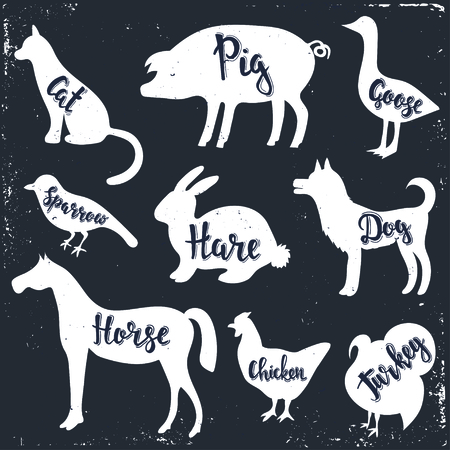 outline bird: Wild animals isolated silhouettes with lettering: cat, pig, goose, sparrow, hare, dog,horse, chicken, turkey.