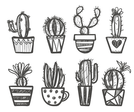 peyote: Hand drawn Set of Cactus in the pots. Isolated vector illustration for identity, design, decoration, packages product and interior decoration