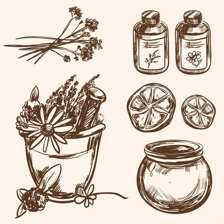 ayurveda: Ayurveda vector Hand drawn Set Healthy lifestyle Harmony with nature