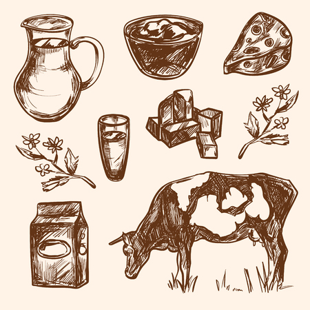 dairy products: Dairy products hand drawn decorative icons set vector isolated illustration