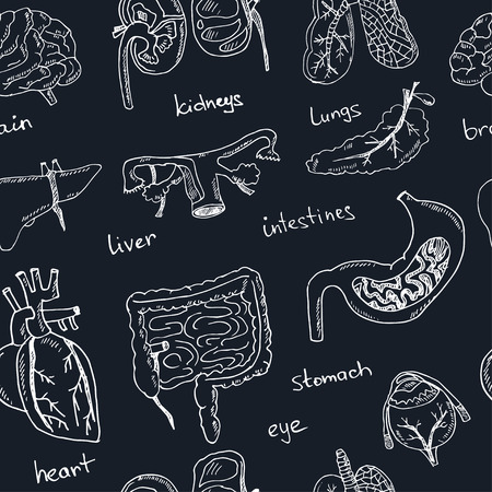 liver cells: Human internals doodle seamless pattern. Vintage illustration for identity, design, decoration, packages product and interior decorating