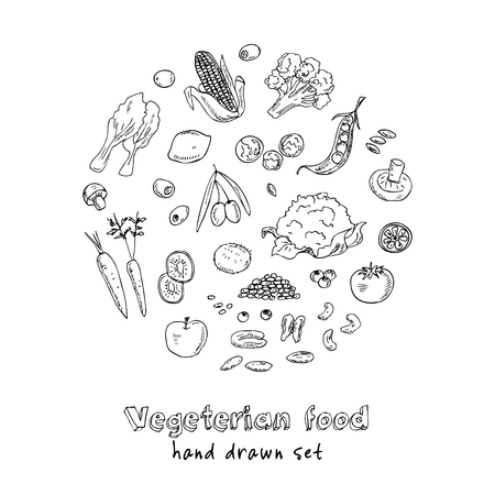 Vector hand drawn set of Vegeterian food. Vegetables, fruits.