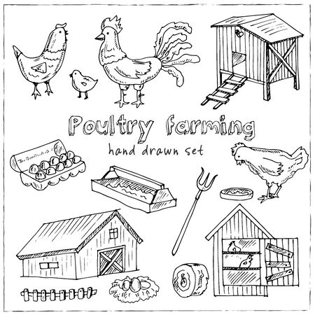 Poultry production hand drawn doodle set. Vector illustration. Isolated elements on white background. Symbol collection.  イラスト・ベクター素材