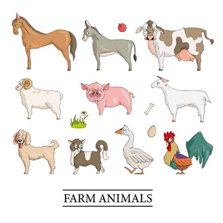 Farm animals set in flat style isolated on white background.Vector illustration. Cute cartoon animals collection: sheep, goat, cow, donkey, horse, pig, cat, dog, duck, goose, chicken, hen, rooster. Vector illustration