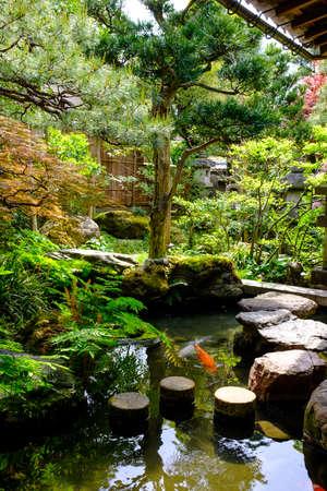 Japanese garden in Kanazawa, Ishikawa prefecture, Japan with a pond and carps
