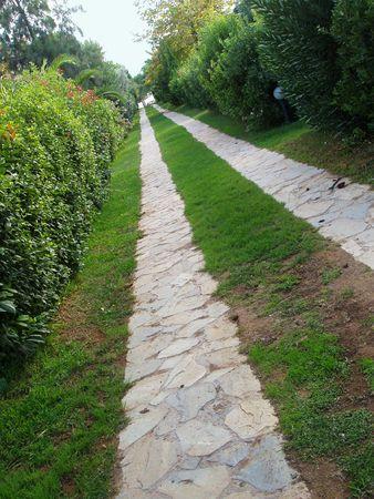 skewed: down the garden path