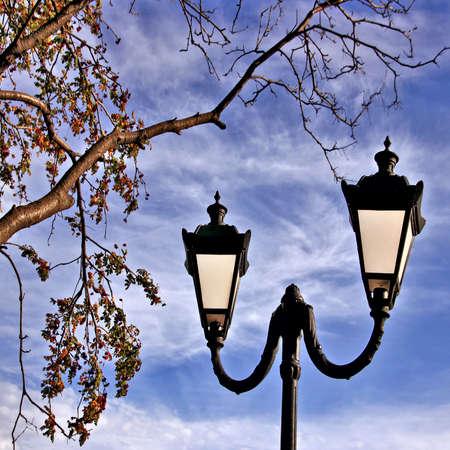 etude: an autumn city etude