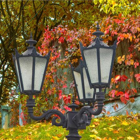 etude: An autumn etude a sreet lantern